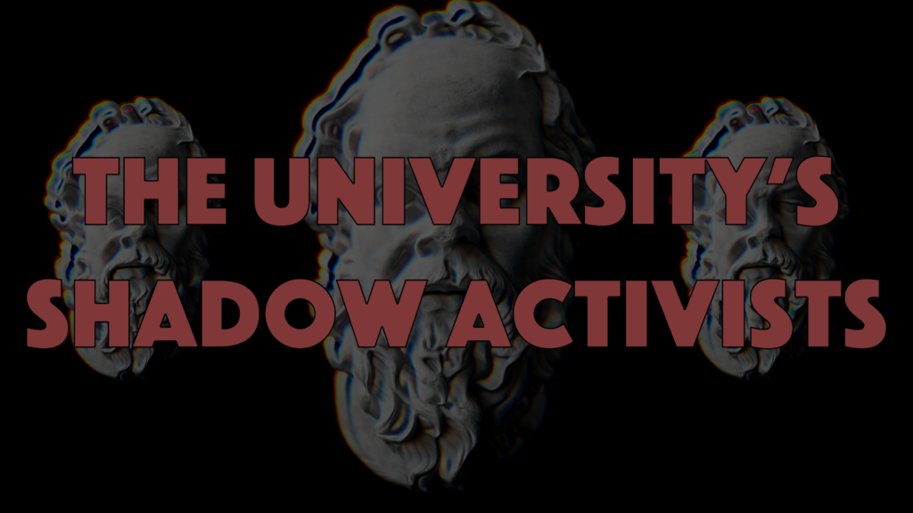 Poster for Architects of Woke: The University's Shadow Activists